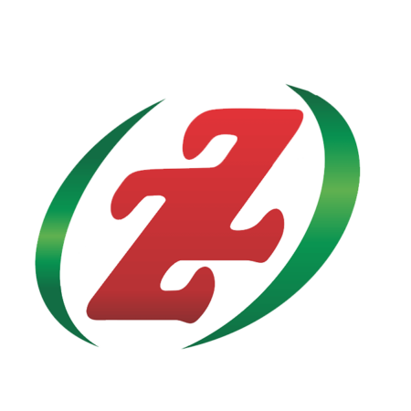 zz-motores-logo